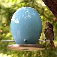 Birdfeeder_1