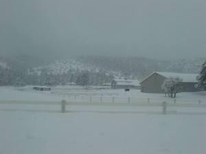 Snowy_farm